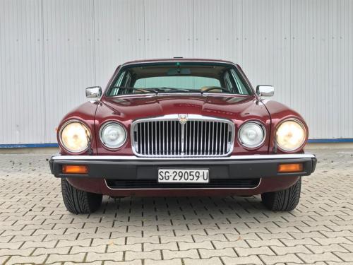 jaguar xj6 4-2 serie3 bordeaux 1984 0005 Ebene 10