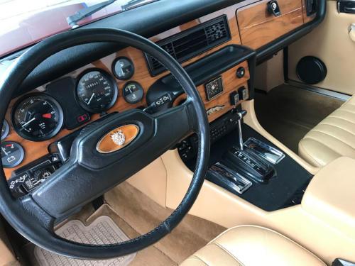 jaguar xj6 4-2 serie3 bordeaux 1984 0011 Ebene 4