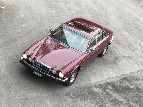 jaguar xj6 4-2 serie3 bordeaux 1984 0014 Ebene 1